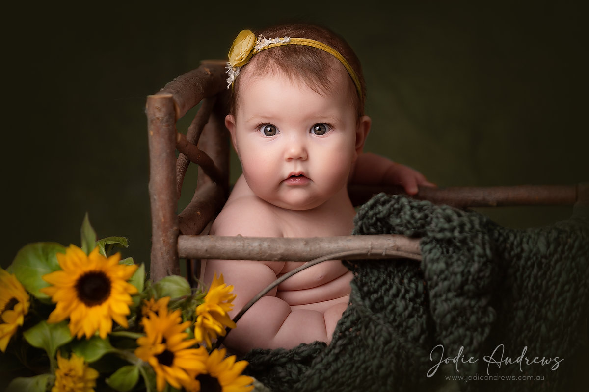 6 Month Old Sitter sessions